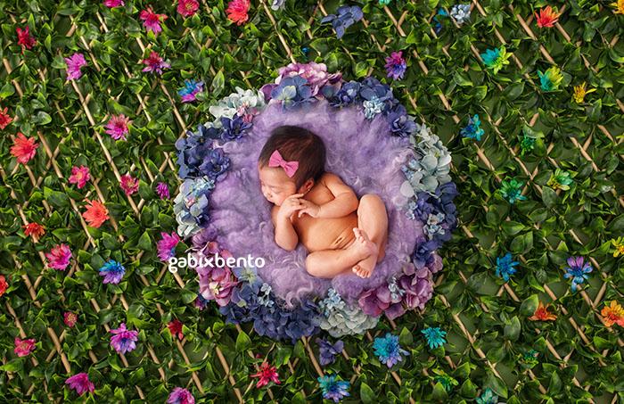 books de bebês recém nascidos fortaleza